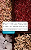 Mastering Arabic Vocabulary and Pronunciation (Palgrave Master Series (Languages))
