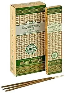Natural Incense Sticks - Natural Agarbatti Latest Price - Goloka Nagarmotha Natural Masala Incense - 15 Gram Pack (6 Packs Per Box)