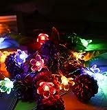 Guirlande lumineuse solaire Sakura pour extérieur, étanche, jardin, paysage, balcon, décoration de jardin, lanterne florale, 7 m50