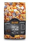 Belcando Mastercraft Fresh Salmon [500g] Trockenfutter für Hunde | 80% Frischfleisch | Hundefutter getreidefrei | sortenrein | für alle Rassen