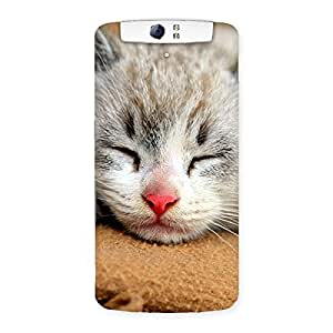 Enticing Premium Cute Sleepings Cat Multicolor Back Case Cover for Oppo N1