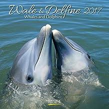 Wale und Delfine 2017: Broschürenkalender mit Ferienterminen