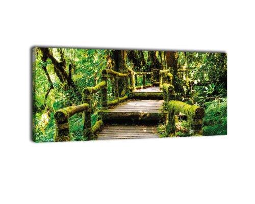 Leinwandbild Panorama Nr. 394 Treppe im Urwald 100x40cm, Keilrahmenbild, Bild auf Leinwand, Dschungel Bäume Wald