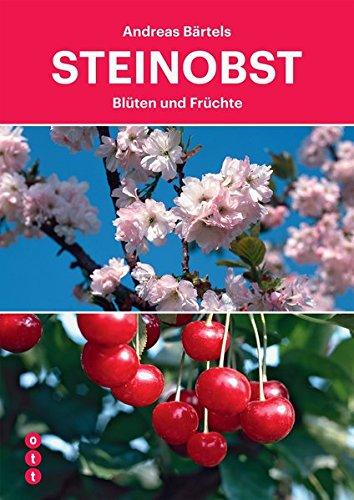Steinobst: Blüten und Früchte