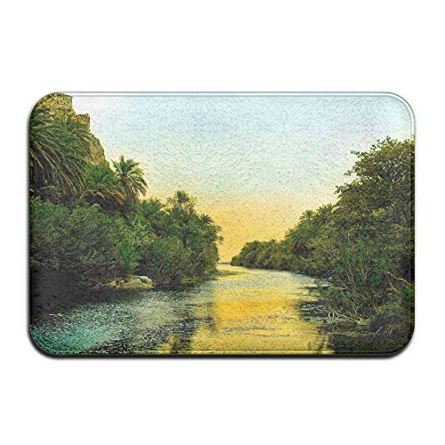 lijied Forest River Evening Trees Palm Photo Non Slip Indoor Doormat for Home Office Clean Absorbent Antiskid Kitchen Bath Mats Indoor Door mats Square Area Rugs