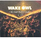 Songtexte von Wake Owl - The Private World of Paradise