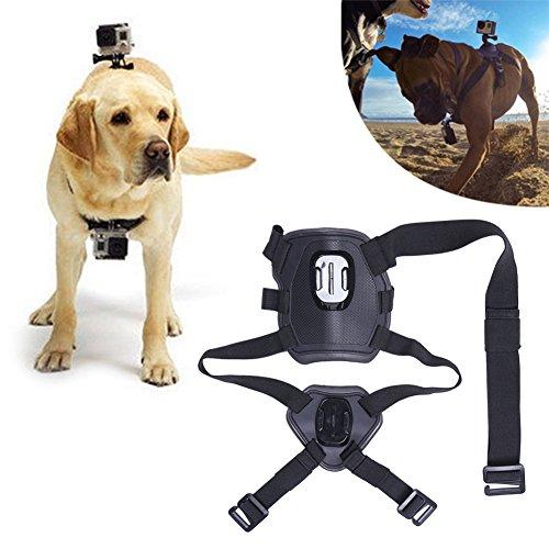 iEFiEL Arnés Ajustable para Perro Universal para GoPro Hero 4 / 3+ / 3 / 2 / 1