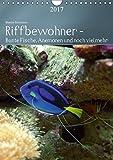 Riffbewohner - Bunte Fische, Anemonen und noch viel mehrAT-Version  (Wandkalender 2017 DIN A4 hoch): Tropische Riffe bieten eine große Vielfalt an ... Farben (Planer, 14 Seiten ) (CALVENDO Tiere)