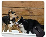 Puppy Dog Gaming Mousepads und Border Collie Personalized Rectangle Gaming Mouse-Pads Kurzfristiger Geschenk-Bedarf?