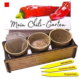 Mein Chili Garten - Ein originelles Geschenk für jeden Anlass. Ideales Chilianzucht-Set als Geschenk zu Weihnachten, Geburtstag oder Ostern