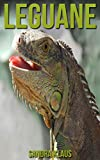 Kinderbuch: Erstaunliche Fakten & Bilder über Leguane