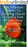 The Ultimate Guide To Keeping Discus...