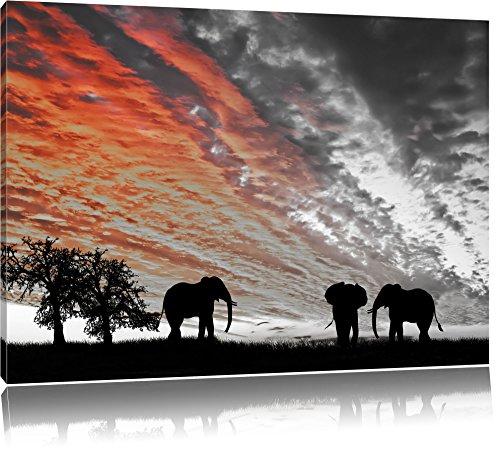 Elefanten in der afrikanischen Wüste bei Sonnenuntergang B&W Detail, Format: 100x70 auf Leinwand, XXL riesige Bilder fertig gerahmt mit Keilrahmen, Kunstdruck auf Wandbild mit Rahmen, günstiger als Gemälde oder Ölbild, kein Poster oder Plakat