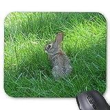 Alfombrilla de ráton del Juego mousemat Conejo Precioso Mousepad Serie Conejo salte en la Hierba Alfombrilla de ratón Conejo Conejito Alfombrillas de ratón Rectángulo Alfombrillas De Raton