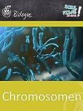 Chromosomen - Schulfilm Biologie
