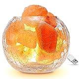 Lampada di sale dell'Himalaya, dimmer regolabile Natura Rosa Crystal Rock Light Migliora la qualità dell'aria alleviare lo stress Notte Lampada di sicurezza - Vetro