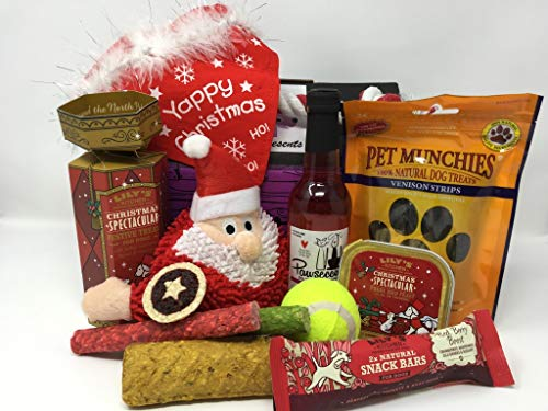 Pet Presents Christmas Treat Hamper for Dogs with Pawsecco Wine