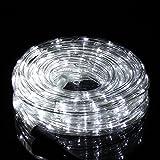 Salcar 10m 240 Leds Luces de Manguera Led Navidad, Cadena de Luces Tubo Led Decorativa IP44 Impermeable Transparente con 8 Modos para Interior, Exterior, Salón, Jardín, Boda, Fiesta (Blanco)