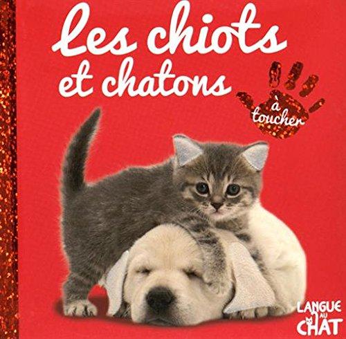 """<a href=""""/node/107085"""">Les chiots et chatons</a>"""