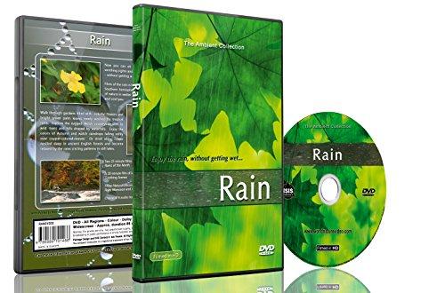 Regen DVD mit natürlichen Geräuschen von Donner zur Entspannung