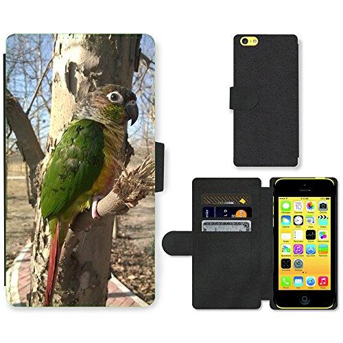 Just Mobile pour Hot Style Téléphone portable étui portefeuille en cuir PU avec fente pour carte//m00140258Parrot du the Wild Oiseau Vert//Apple iPhone 5C