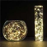 Frcolor Guirnaldas luminosas Cadena de luces para navidad decoracion de fiestas Bodas Jardín Uso exterior e interior 100-LED 10M (Blanco Cálido)