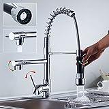 Elegant Hochdruck Armatur Wasserhahn Spiralfederarmatur für Profiküche Küchenarmatur Spiral mit 2 Wasserabfluß 2 Jahre Garantie