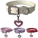 Hundehalsband aus Leder mit gratis Herzanhänger in den Größen XS, Small, Medium und Large (XS, Weiß)