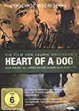 DVD Cover 'Heart of a Dog (OmU)