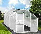 Gewächshaus Aluminium mit Stahlfundament 15,1 m³ Alu Gartenhaus Treibhaus 380x250x205cm 6mm Platten