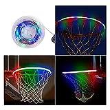ZXPYZ Scatola Chiara di Colore LED Basket Cesto Luminosa del Sensore Esterni Canestro Luce Solare