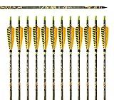 VERY100 12 Stück Carbonpfeile für Bogenschießen 31 Zoll mit 5 Zoll Zebra Naturfedern Pfeil und Bogen 7.5MM für Compound und Recurve Bogen 20 bis 45 LBS