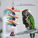 fdit pet bird parrot colorful beads bell toys chewing climb toy swing cage accessory decor pendant Fdit Pet Bird Parrot Colorful Beads Bell Toys Chewing Climb Toy Swing Cage Accessory Decor Pendant 51rCOF1dmPL