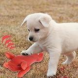 ECMQS Schwein Form Hund Quietschende Spielzeug Gummi Gerösteten Spanferkel Hund kauen Spielzeug für Zahnreinigung Lustige Spielzeug für Hunde Hund liefert