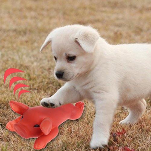 ECMQS Schwein Form Hund Quietschende Spielzeug Gummi Gerösteten Spanferkel Hund kauen Spielzeug für Zahnreinigung Lustige Spielzeug für Hunde Hund liefert -