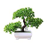 Steellwingsf Accogliente Pino Bonsai Simulazione Artificiale Vaso pianta Ornamento Home Decor scrivania Ornamento Green