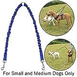 Doppelter Hundeleine-Koppler - Bestes für große & mittlere Rassen - Tangle Free Dual Dog Lead Splitter für zwei Hunde - verlängert 19-31 Zoll - Schwarz Nylon Reflective (Blau)