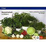 Kräuter und Gemüse vorbereiten für Anfänger: Kartei Klasse 7-10 (Hauswirtschaft in Bildern)