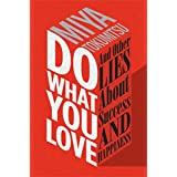 Do What You Love: And Other Lies About Success & Happiness (English Edition)