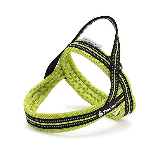 ZEEY Hundegeschirr Fluorescent 3M Night Reflective Stripes, weiche einstellbare Hunde Weste Harness gepolsterte Mesh-Kabelbaum für große / mittlere / kleine Hunde, Grün (XXS (41-52cm)) (Leash Attachment)