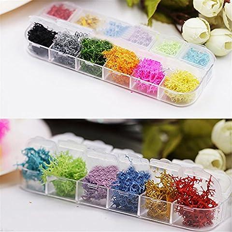 Coulorbuttons 12couleurs Corail d'algues séchées Fleur Préservé Fleur DIY Nail Art des matériaux