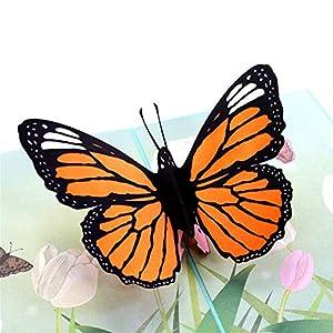 X de laboratorio 3d mariposa