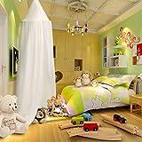 KING DO WAY Betthimmel Deko Baldachin aus Leinwand , Bett-Überdachung für Baby-Kind-zelte aus Cotton Canvas,Mückennetz Moskitonetz Insekten-Malaria Schutz,Hohe 240cm,Himmel Weiß