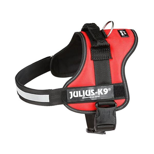 Julius-K9 Powerharness_p12 2