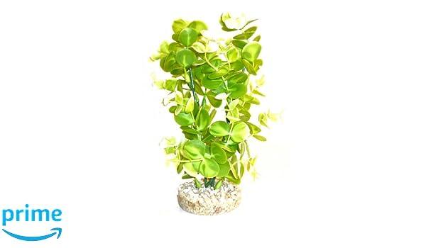 Sydeco Aqua Aquarium Fern Plant Height 19 Cm Green Pet Supplies Decorations