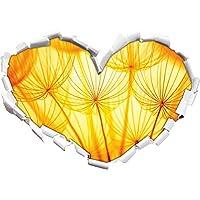 Denti di leone fiori a forma di cuore luce arancione nel formato sguardo, parete o adesivo porta 3D: 92x64.5cm, autoadesivi della parete, decalcomanie della parete,