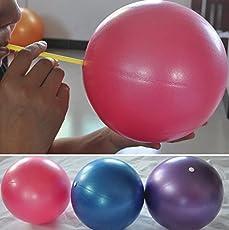 SLB Works 25cm Mini Exercise Pilates Balance Training Yoga Fitness Ball Abdominal