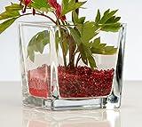 Glasvase Cube klar eckig 10 cm Ø 10,0 x 10,0 cm von Sandra Rich