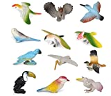 Plastic Model Bird Figures Kids Toy Set of 12pcs Multi-color