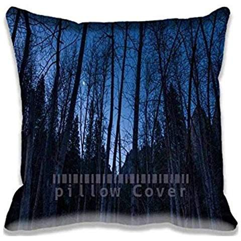 a-crescent-moon-rises-above-the-merced-20-x-20-inch-decorative-home-cotton-square-throw-pillow-cover